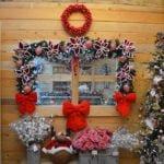 Il magico Natale di Centro del Verde Toppi